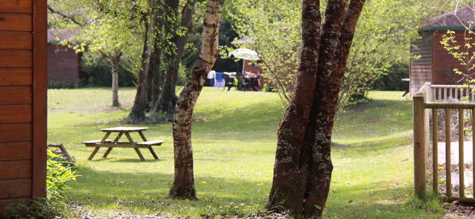 Le parc du camping Chalets Mirandol dans la Vallée de la Dordogne à Vayrac